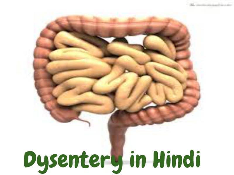Dysentery in Hindi- पेचिश (आंव) के कारण प्रकार और उपचार -