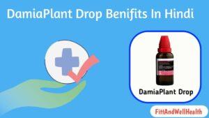 Read more about the article Damiaplant drops benefits in Hindi डामियाप्लांट ड्रॉप्स का उपयोग खुराक और नुकसान